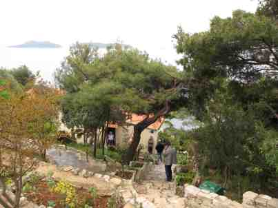 13. Darko and Katic's house - Korcula