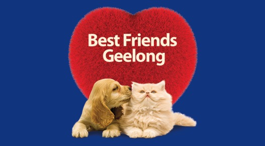 BestFriendsGeelong.jpg