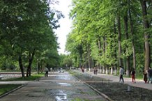 oak-park4_sm.jpg