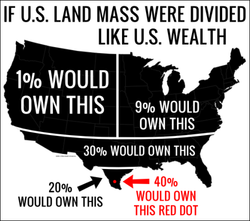 250px-If_US_land_mass_were_distributed_like_US_wealth.png